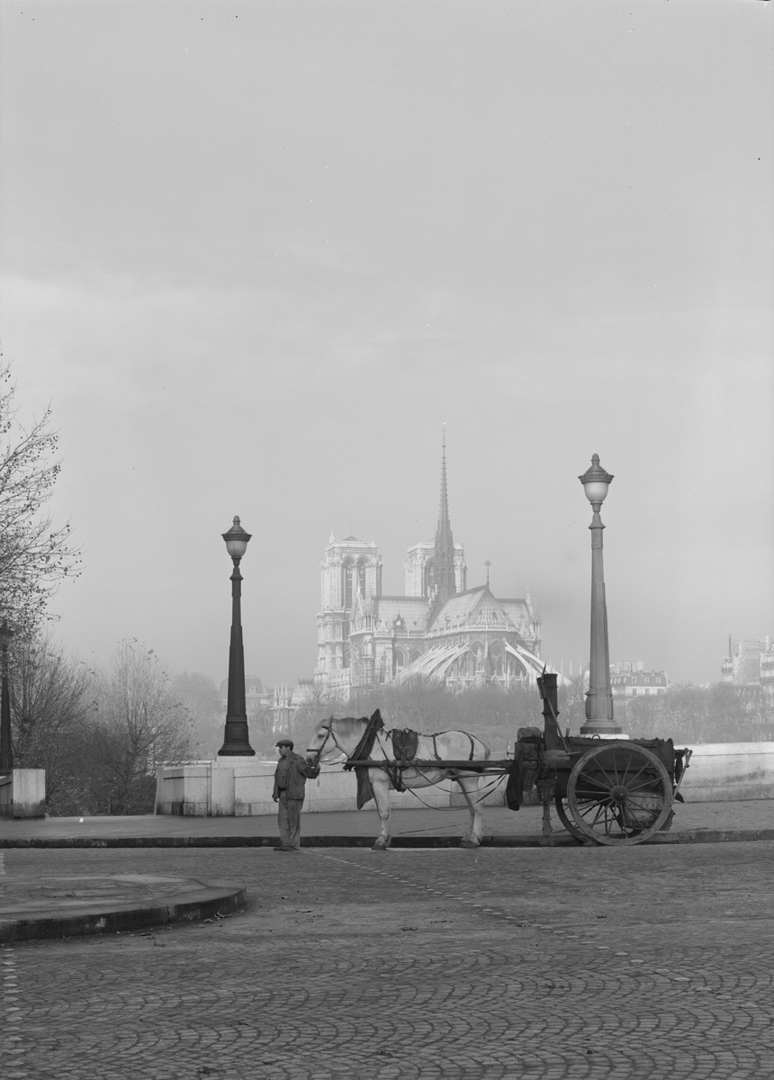 Photographie de la cathédrale Notre-Dame de Paris - René-Jacques 1948